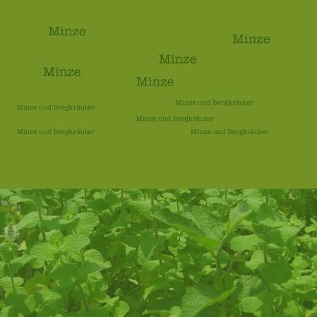 MinzeD