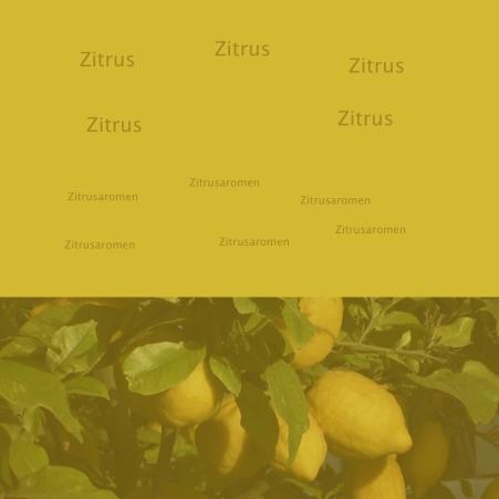 ZitrusB